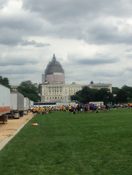 Capitol Building is under construction